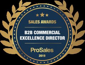 Kristina Hagström Ilievska - B2B Commercial Excellence Director Winner 2019